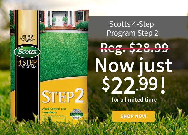 Scotts 4-Step Program Step 2
